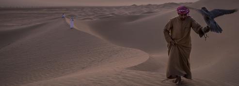 À la rencontre des princes de la fauconnerie, dans les dunes du désert de Dubaï