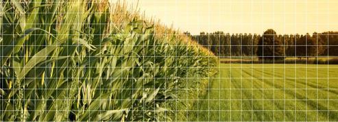 La carte des agricultures françaises