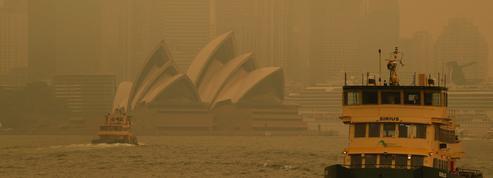 Incendies en Australie: le pays au bord de l'asphyxie