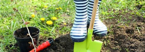 Peut-on planter des arbres fruitiers dans un terrain pollué?