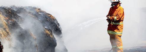 Les vignobles australiens sévèrement touchés par les incendies