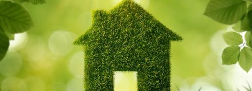 Municipales: les écologistes se préparent à une vague verte