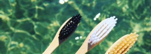 Brosses à dents, pailles... la fibre biodégradable