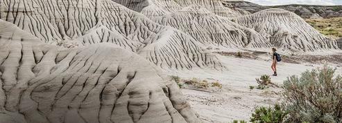 Canada: chasse aux trésors dans l'Alberta sur les traces des dinosaures