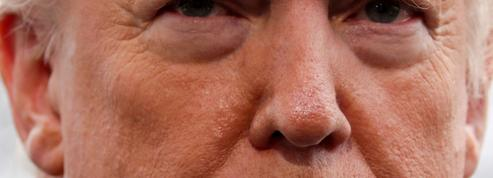 Éric Zemmour: «Trump est leur pire cauchemar»