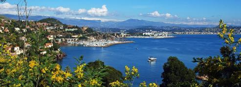 Le long de la Riviera, escapade bucolique sur la route du mimosa