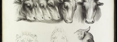 «Des animaux et des hommes»...nos archives de la semaine sur Instagram