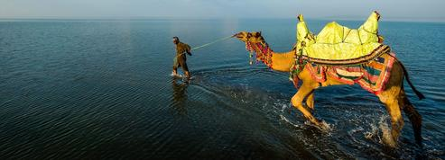 Plongée au Gujarat dans l'Inde qui a vu naître Gandhi