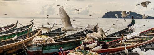 En Afrique, la lente agonie du Lac Victoria