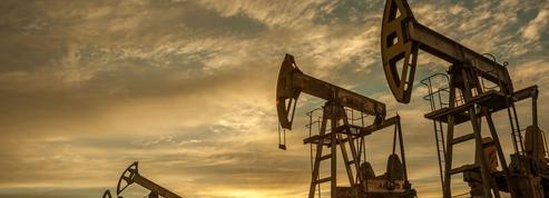 La pandémie va accélérer la diversification des compagnies pétrolières
