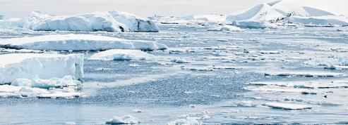 «L'obsession pour le réchauffement climatique est une fuite qui empêche de véritables avancées écologiques»