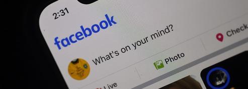 Loi Avia: «Facebook avait déjà délimité ce qu'il est permis de penser»