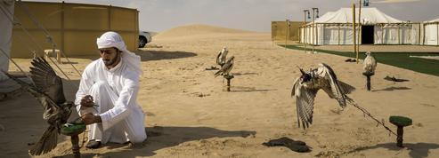 Le Faucon ,de Gilbert Sinoué: Cheikh Zayed a fait un rêve…