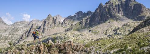Avec le réchauffement climatique, les Alpes du Sud verdissent