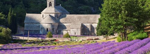 En Provence, le silence de la terre