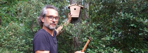 Je fabrique un nichoir à oiseaux