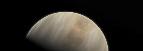 Non, des traces de vie n'ont pas été détectées sur Vénus