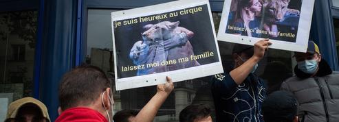 Les professionnels du cirque en colère