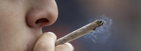 Cannabis: ces habitudes de consommation prises pendant le confinement