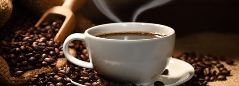 Derrière l'étiquette : le café