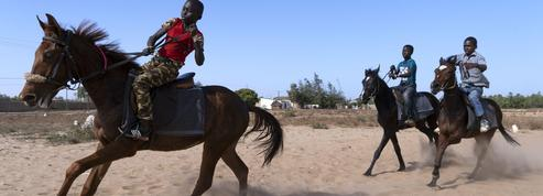 Au Sénégal, les enfants jockeys de la savane
