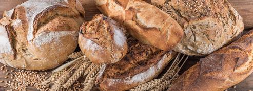 La tradition divise artisans et industriels de la boulangerie