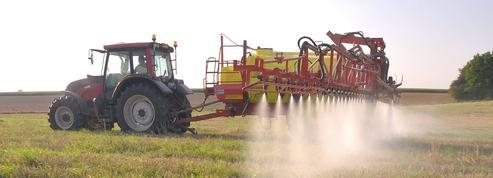 Europe: ces pesticides interdits et exportés