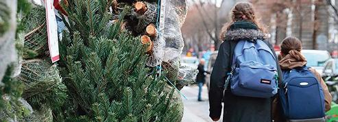 Les Français ne seront pas privés de sapins de Noël