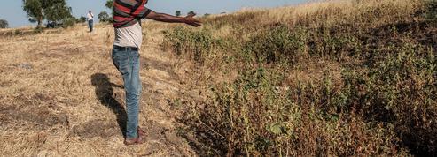 L'Éthiopie lève le voile sur le massacre, à Mai Kadra, de 600 civils en quelques heures
