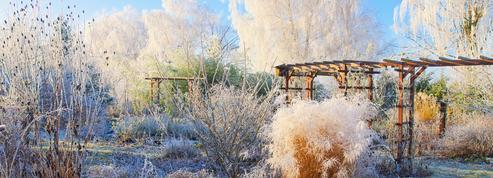 Préparer son jardin pour l'hiver