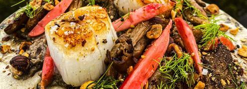 Les recettes de Julien Sebbag: potimarron rôti, saint-jacques, crème de champignons et pleurotes, gâteau au chocolat très fragile