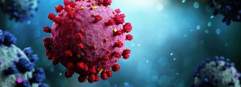 Les mutations du coronavirus font l'objet d'une traque permanente