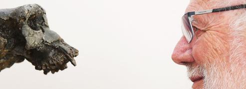 Le fémur de Toumaï, notre plus vieil ancêtre, au cœur d'invraisemblables polémiques