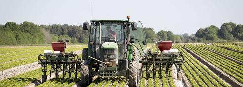 Comment la crise sanitaire a réconcilié les Français avec leurs agriculteurs