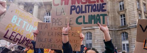 Loi climat: sans député, EELV veut quand même participer aux débats