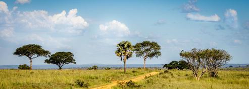 Pétrole: Total lance son grand projet ougandais