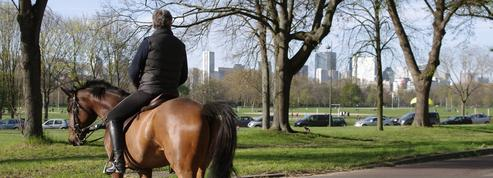 Aller au supermarché à cheval, c'est original et surtout tout à fait légal