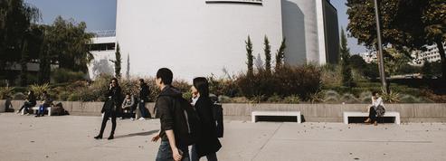 Mon avis sur le BBA de l'Essec: «La diversité culturelle des étudiants est ce qu'il y a de plus riche en école de commerce»
