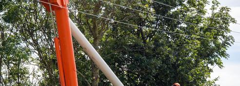 Un citoyen peut contraindre le maire à élaguer les arbres