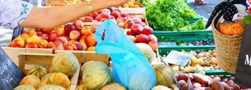 La production de cerises, de pêches et d'abricots au plus bas