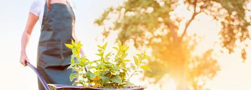 Les 8 erreurs les plus fréquentes au jardin