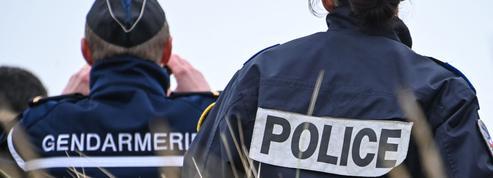 Le couple police-gendarmerie bat légèrement de l'aile