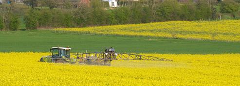 Pesticides: un risque accru pour six maladies