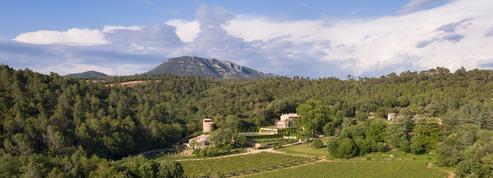 Gastronomie: Luke Skywalker veille sur Château Margüi