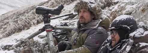 La Panthère des neiges :cinéma d'hauteur