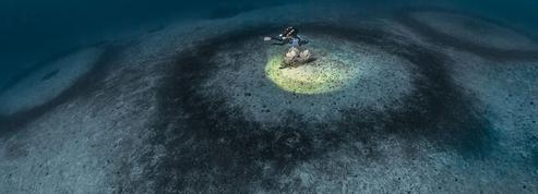 Vingt jours pour percer le mystère des anneaux sous-marins du Cap Corse
