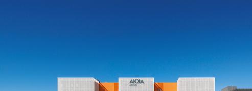 Akka racheté au prix fort par Adecco