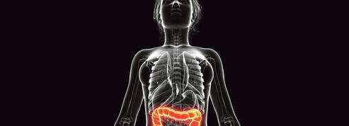 Les espèces qui possèdent un appendice ont une plus grande longévité