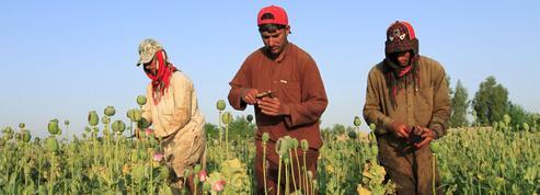 L'Afghanistan, un pays accro à l'aide internationale et à la culture du pavot