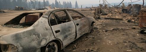 Incendies: en Sibérie, des dévastations records